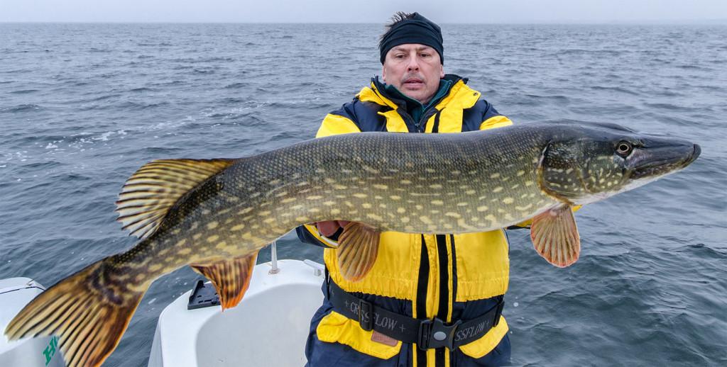 Ryba 90cm złowiona przez Wieśka na wobler własnej produkcji