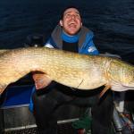 Rekordowy szczupak 130cm z morza bałtyckiego