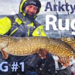Arktyczna Rugia – życiówka szczupaka Dzikusa